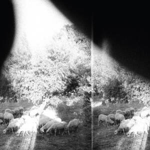 Godspeed You! Black Emperor - Asunder, Sweet and Other Distress [vinyl 180g+downloadcode]