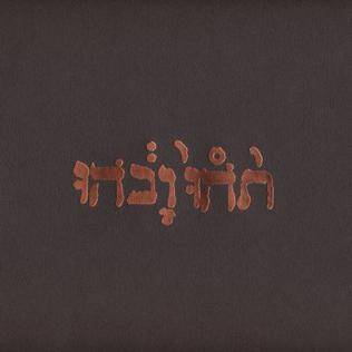 Godspeed You! Black Emperor - Slow Riot For New Zero Kanada [vinyl]