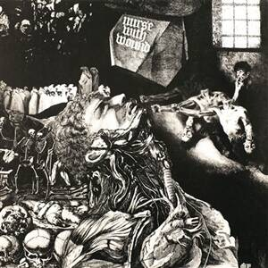 Nurse With Wound - Merzbild Schwet [vinyl limited blue]